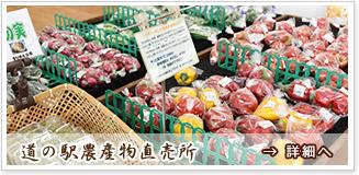 道の駅 信州新野千石平 蔵 農産物直売所